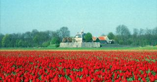 Tulpenroute over Schokland