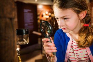 Activiteiten kerstvakantie Museum
